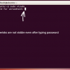 Show Asterisks When Typing Password in Ubuntu Terminal